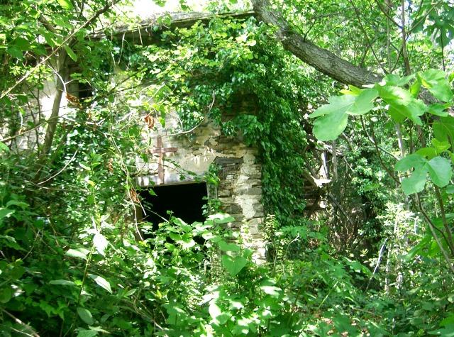 325 Athos 2007 ruine watermolen