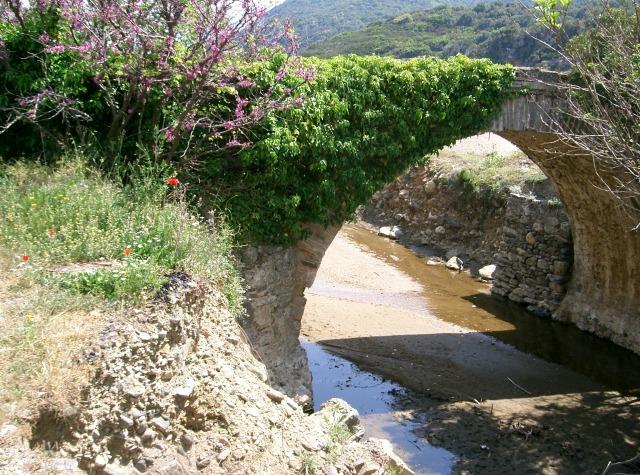 329 Athos 2007  Pantocratoros brug