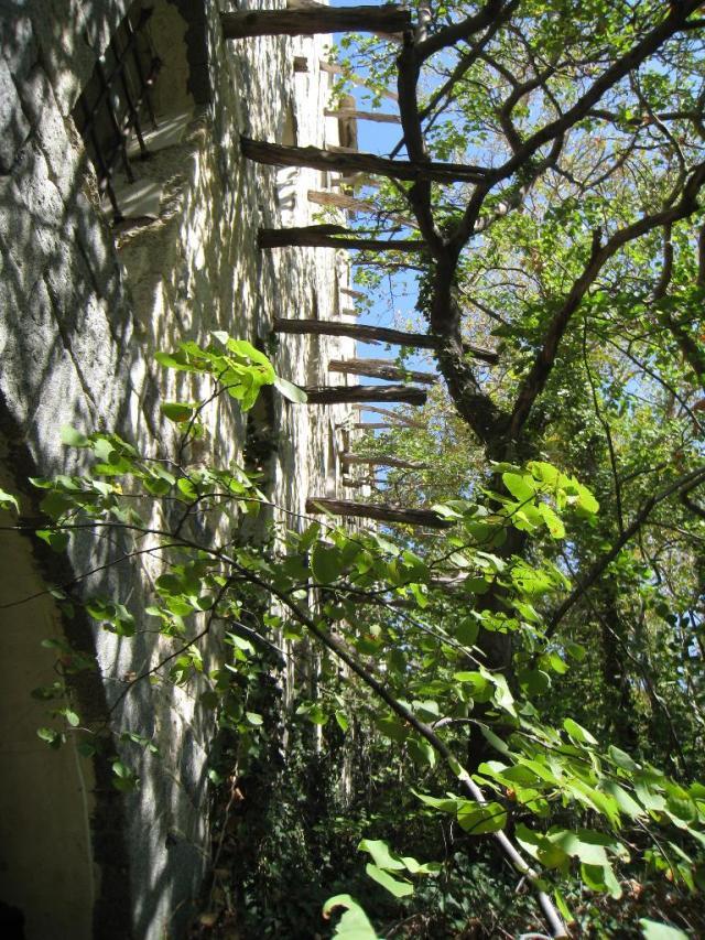 IMG_3123 Roussikon vertical building V