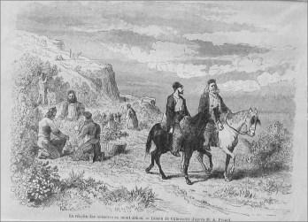 Athos_horses_print_1860_3