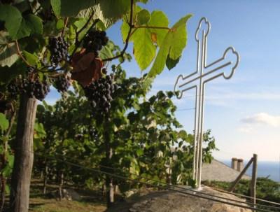 Img_3373_kellio_ag_georgiou_grapes