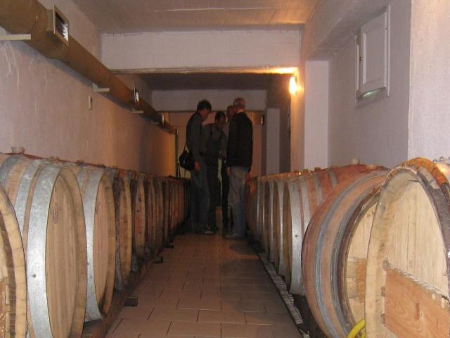 IMG_3349 wine cellar Mylopotamos