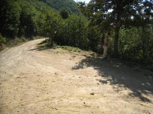 IMG_3447 crossing near Antithonas