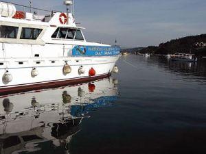 Boat Sofia
