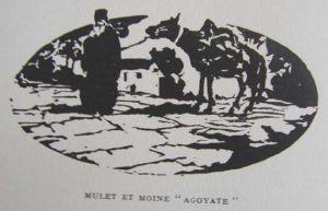 Perilla mule and monk