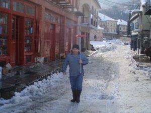 Karyes main street jan 2010[1]