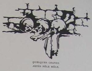 Perilla skulls