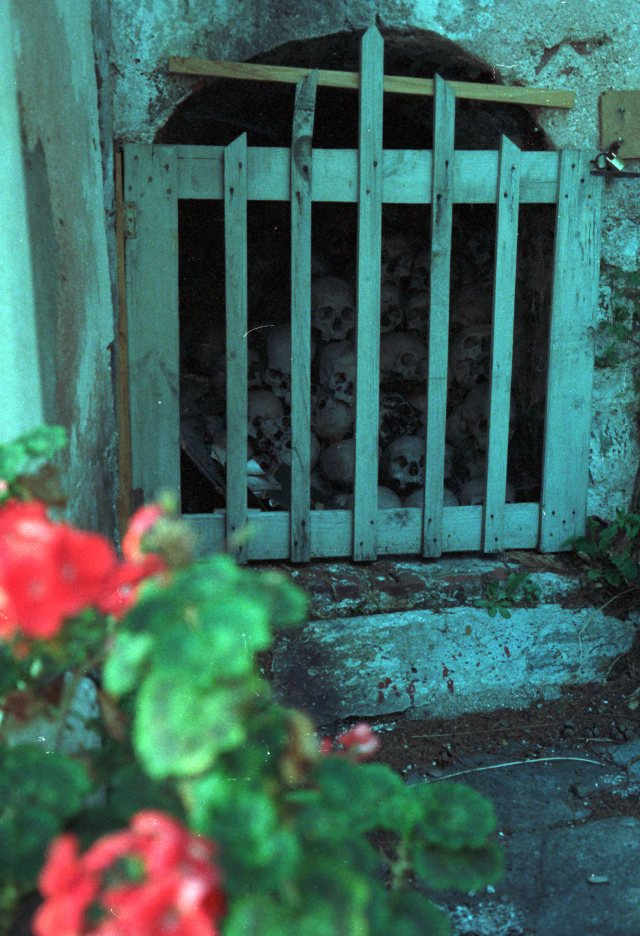 053 Athos Dionysiou - schedels