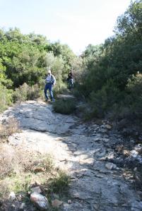 Path Pantokratoros Vatopedi