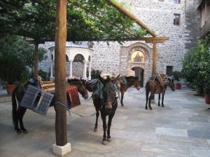 IMG_3554 Grigoriou 1st courtyard