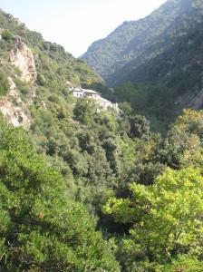 IMG_3591 kellion near Ars Simonospetras