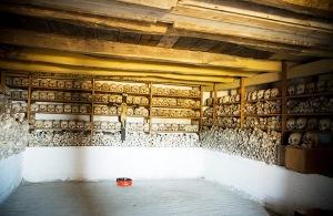 Unknown ossuarium