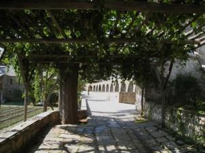 IMG_3638 Stavronikita aquaduct and vines