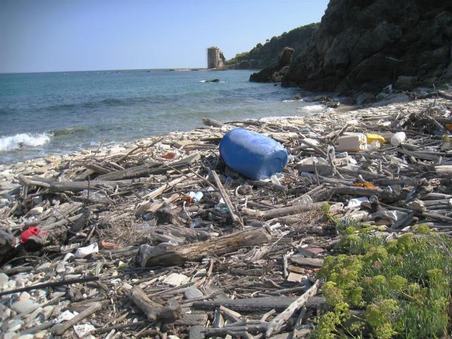 img_3648-beach-near-kaliagra-large