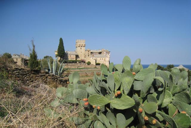 img_3682-stavronikita-cactus-large
