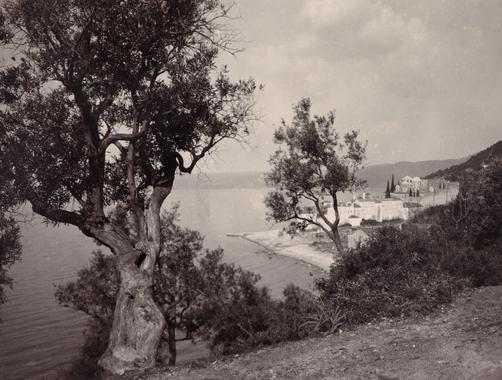 NG Xenofontos Gnarled trees frame a view of Xenofontos Monastery