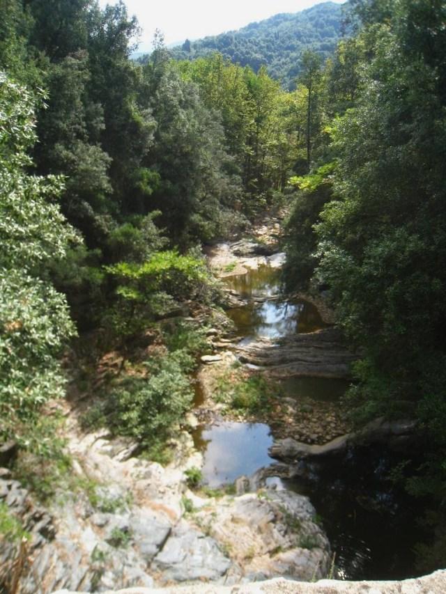 03-10 14 brook towards Iviron