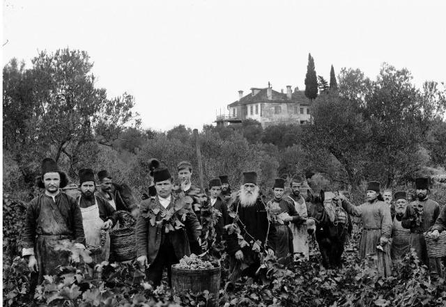 Karyes grape harvest, beginning 1900