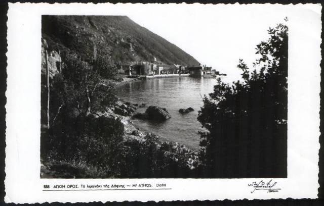Dafni postcard