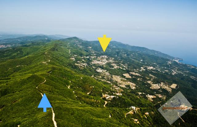 ridge plus karyes