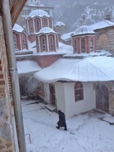 gregoriou snow 2