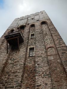 toren dion