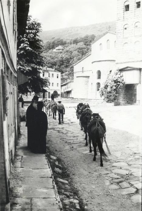 Karyes 1973