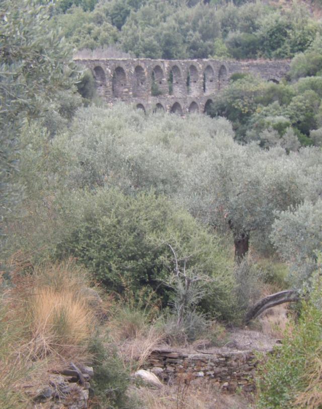 aquaduct academy