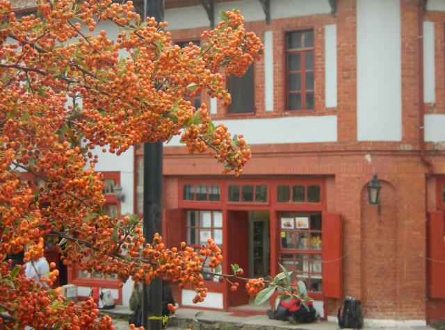 red berries karyes shops